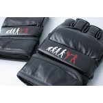 MMA & Boxing Gloves